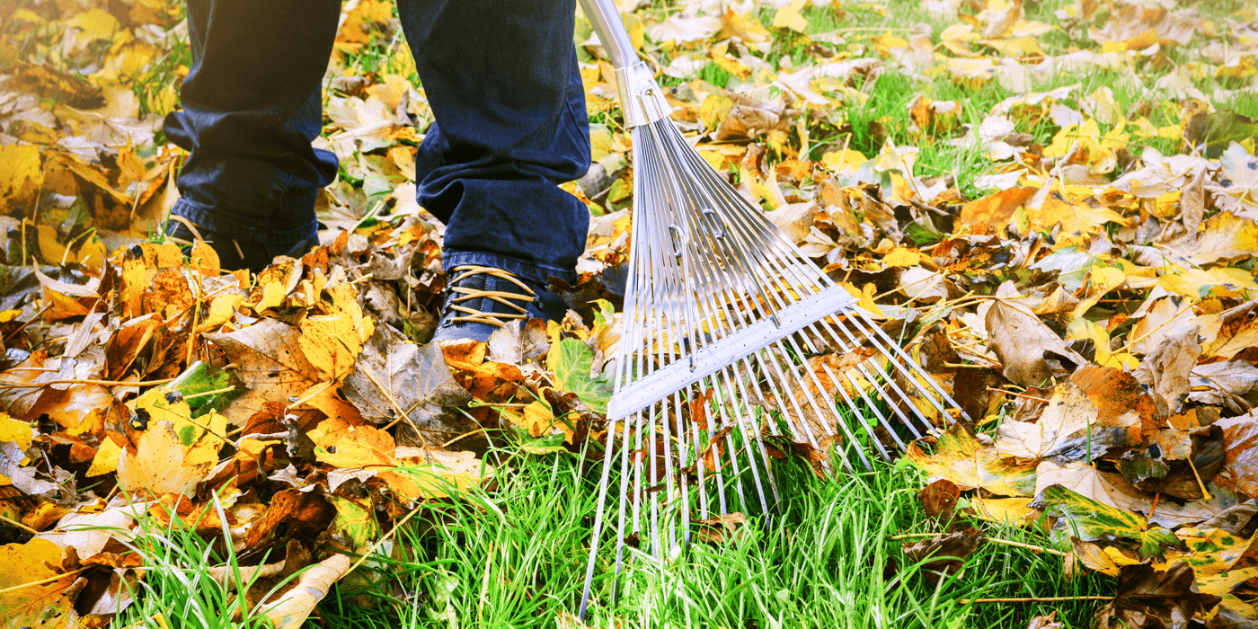 6 Fall Maintenance Tips for Homeowners Featured Image